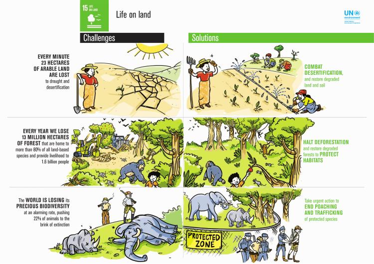 15_Life on land_FINAL-1
